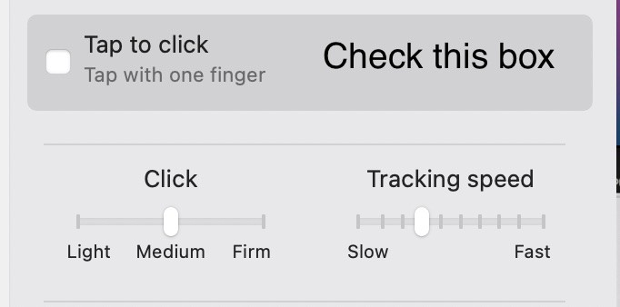 How to enable the tap to click feature on a MacBook